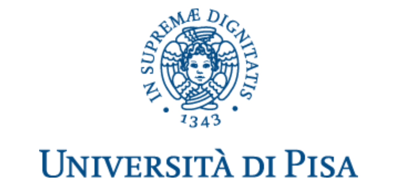 University of Pisa (UniPI)